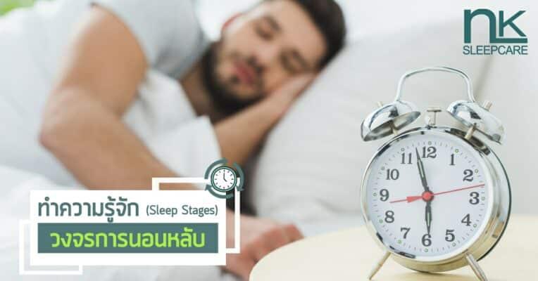 มาทำความรู้จักวงจรการนอนหลับ (Sleep Stages)