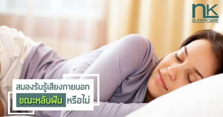 สมองรับรู้เสียงภายนอกขณะหลับฝันหรือไม่